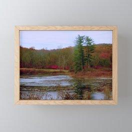 Evergreen Pond Framed Mini Art Print