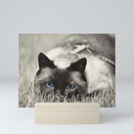 Behind Blue Eyes II Mini Art Print