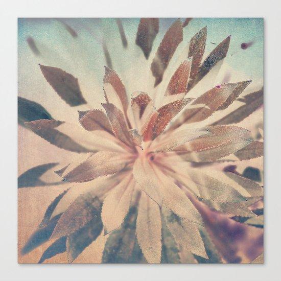 Vintage agava. Canvas Print