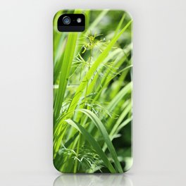 Singular iPhone Case