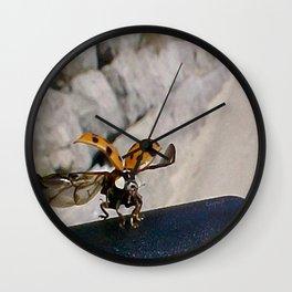 """""""Sweet Ladybug - Take Off"""" jjhelene design Wall Clock"""