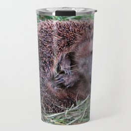 Erinaceidae,small hedgehog, wild living, sleeping in the grass Travel Mug