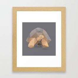 Giant Tortoise.  Framed Art Print