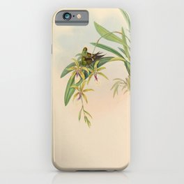 Vintage Print - A Monograph of the Hummingbirds (1849) - Letitia iPhone Case