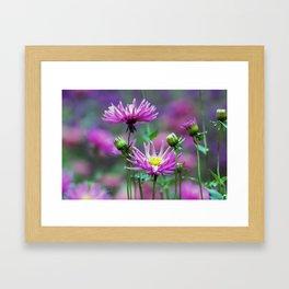 Longwood Gardens Autumn Series 143 Framed Art Print