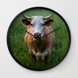 COW - FIELD - GREEN - VALLEY - NATURE - PHOTOGRAPHY - LANDSCAPE Wall Clock