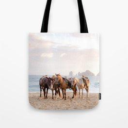 Horses and a horseman Tote Bag