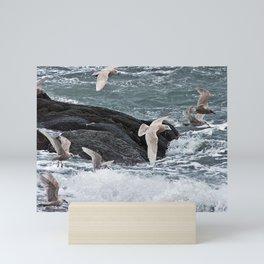 Gulls shop for Dinner Mini Art Print