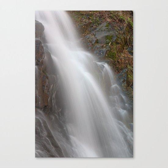 Jones Run Falls Canvas Print