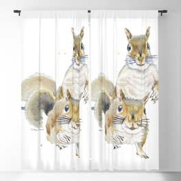Two Squirrels Blackout Curtain