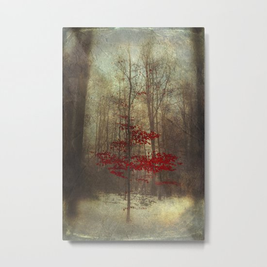 nonsuch Metal Print