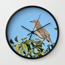Northern Mockingbird Looks South Wall Clock