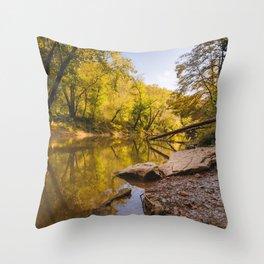 Kentucky's Red River Throw Pillow
