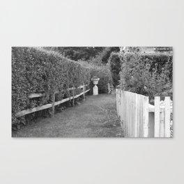 Through The Hedges Canvas Print