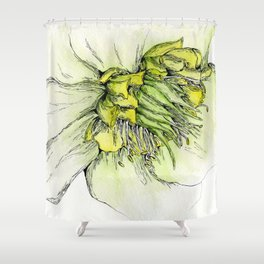 Watercolor Helleborus Shower Curtain