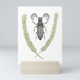 Feather Horned Beetle of Australia Mini Art Print