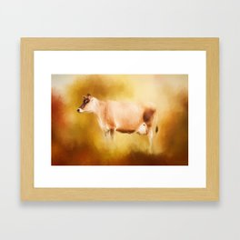 Jersey Cow In Field Framed Art Print