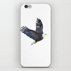 Bald eagle in flight iPhone & iPod Skin