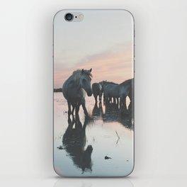 Camargue Horses I ... iPhone Skin