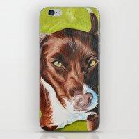 jasmine iPhone & iPod Skins featuring Jasmine by Lindsay Larremore Craige