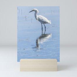 Snowy Egret from Chincoteague No. 1 Mini Art Print