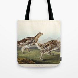 Sharp-tailed Grouse from Birds of America (1827) by John James Audubon etched by William Home Lizars Tote Bag