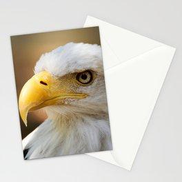 Bald Eagle - Bird of Prey Portrait Stationery Cards