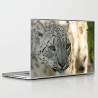 snow leopard Laptop & iPad Skins featuring Snow Leopard by Sean Foreman