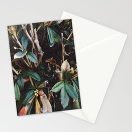 Aesthetic Leaves Stationery Cards