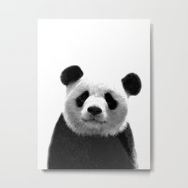 Black and white panda portrait Metal Print