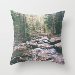 Just Around the Riverbend Throw Pillow
