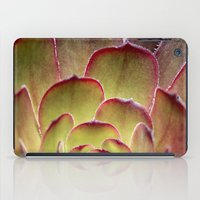 succulent iPad Cases featuring Succulent by Shy Photog