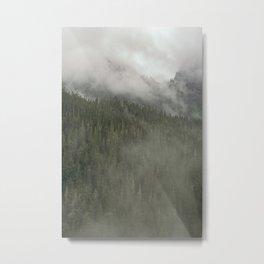Mt. Rainer 2 Metal Print