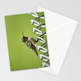 Hummingbird on a Fence Stationery Cards