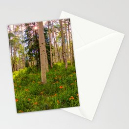 Crested Butte, Kebler Pass in Spring - Panorama by OLena Art for #society5 Stationery Cards