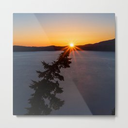 Sunset Tree Top Metal Print
