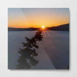 Sunset Tree Top Metal Print