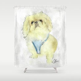 Augie Dogie Shower Curtain