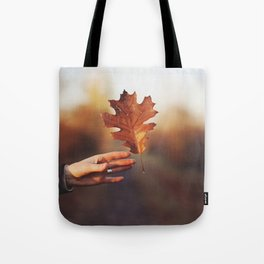 Catching a bit of Autumn Tote Bag