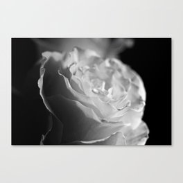 A process in the weather of the heart Canvas Print