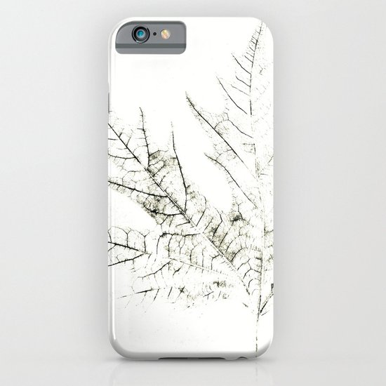 Maple Leaf Silhouette On  White Background iPhone & iPod Case