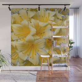 IVORY COLOR CLIVIA FLOWERS Wall Mural