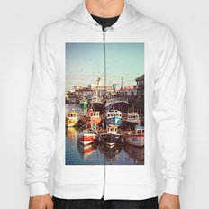 Boats resting in the Harbour Hoody