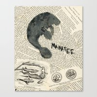 manatee Canvas Prints featuring Manatee by Cassidy Tebeau