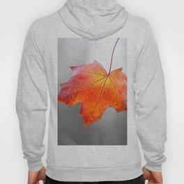 Red Maple Leaf On Grey - Velvet Autumn Hoody