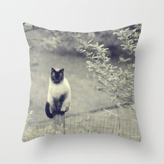 Sitting, Waiting, Wishing II Throw Pillow