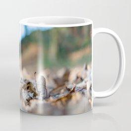 Dried leaves on the ground Coffee Mug