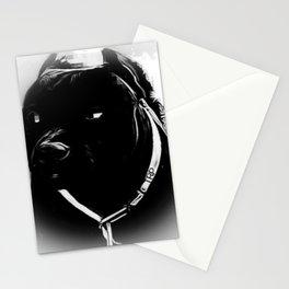 Pit Bull Models: Khan 02-04 Stationery Cards