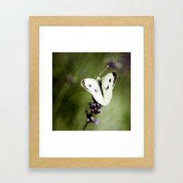 Butterfly Dream 2 (Square) Framed Art Print