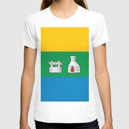 flag of Yekaterinburg or Ekaterinburg T-shirt